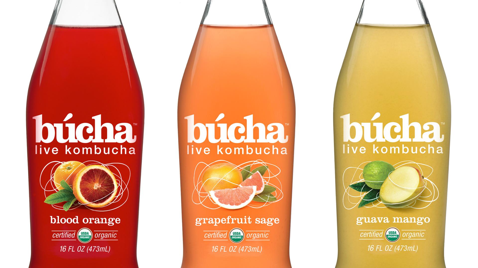 Búcha | Brand Development